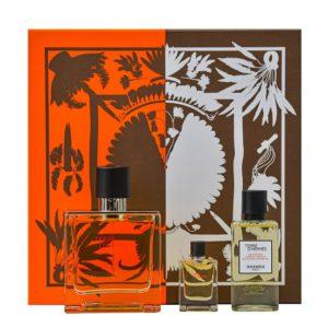 Parfum HERMES Terre D Hermes SET 75 ML apa de parfum + 40 ML after shave + 12,5 ML apa de parfum